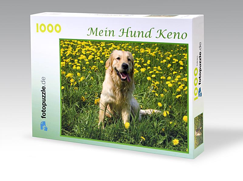 Fotopuzzle bis 1000 Teile inkl. Verpackung mit Fotodruck